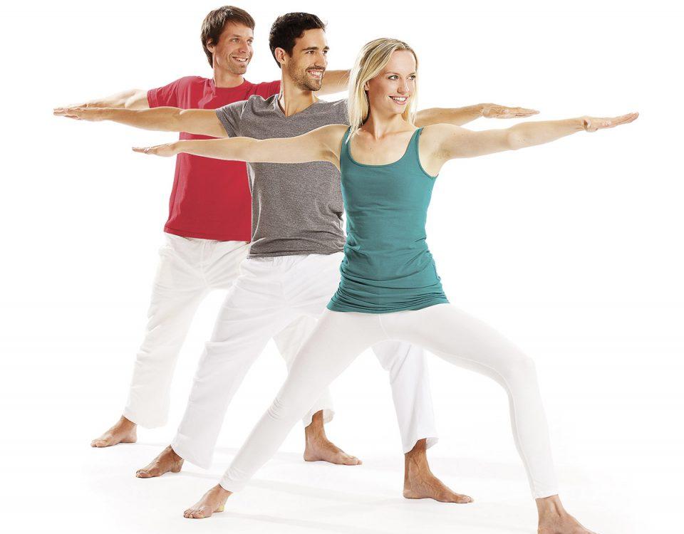 Gruppe Helden Asana Yoga Vidya